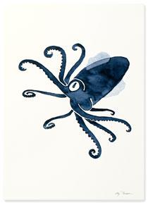 Affisch bläckfisk